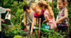 Actividades en el huerto con niños