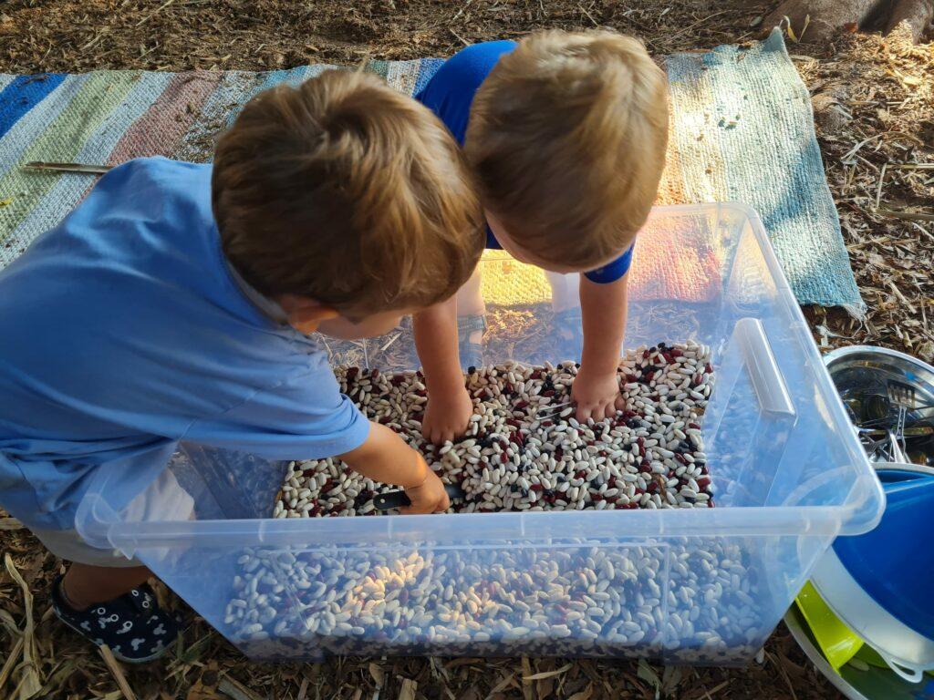 Montessori Caracoliris Comunidad Infantil